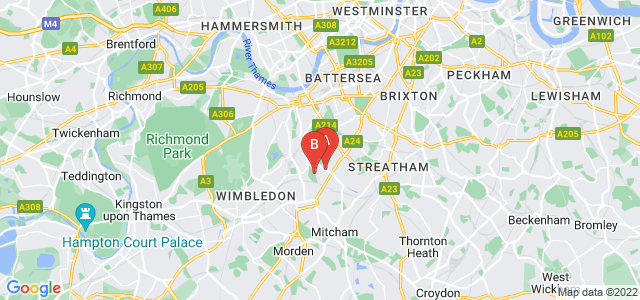 Google static map for Tooting