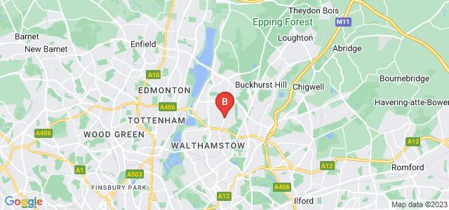 Google static map for Highams Park