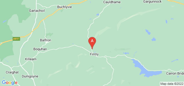 Google static map for Fintry