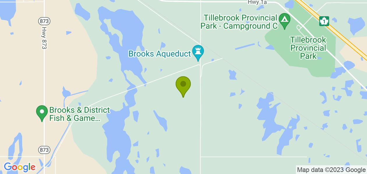 Aqueduct Trout Pond