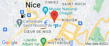 Le Petit Palais de Nice *** - Plan