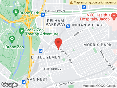 Morris Park Apartments For Rent