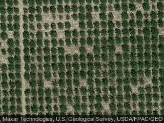 12365 Willard Rd, Red Bluff, CA 96080