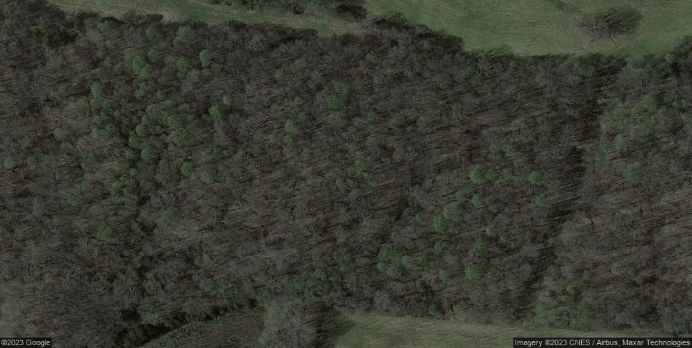 1727 Sharpes Garden Rd, Russellville, KY 42276