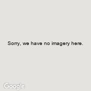 Street View of 10651 South Branch Road, Brinston, Ontario