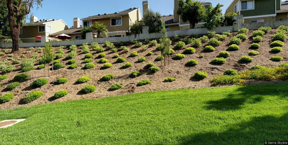 11 Marigold #16, Aliso Viejo, CA 92656